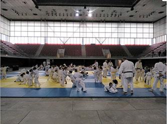 Segundas jornadas de deporte base en la Caja Mágica: Judo, Aikido y Baloncesto.